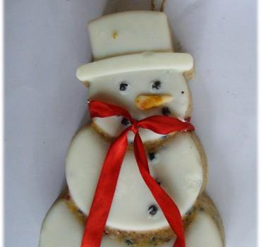 sneeuwpop2